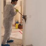 Demontage nach Konterminierung der Wandfläche